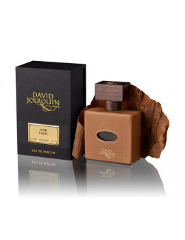 DAVID JOURQUIN CUIR TABAC VENDOME COLLECTION