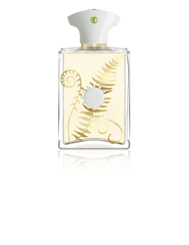 AMOUAGE SUNSHINE UOMO EDP 100M