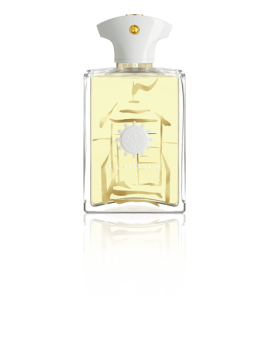 AMOUAGE BEACH HUT UOMO EDP 100M